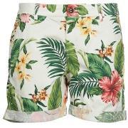 Shorts & Bermudas Franklin   Marshall  PALAWA